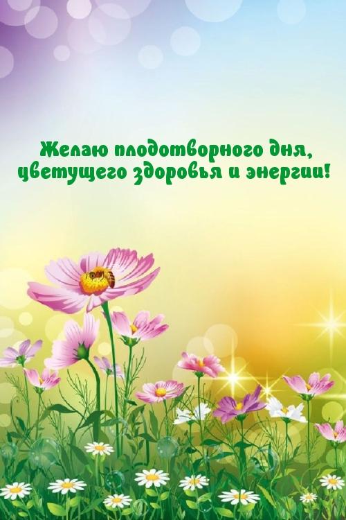 Желаю плодотворного дня, цветущего здоровья и энергии!