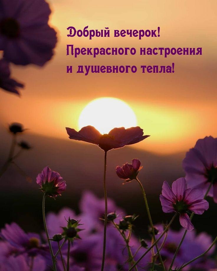 Добрый вечерок! Прекрасного настроения и душевного тепла!