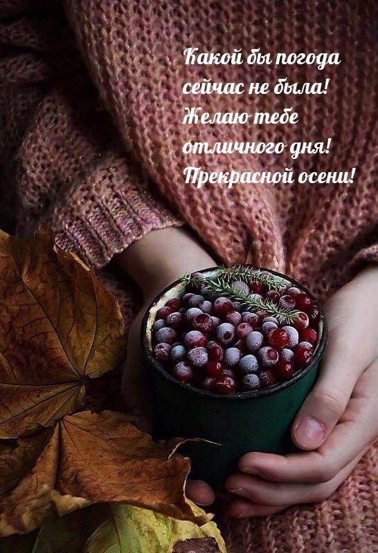 Желаю тебе отличного дня! Прекрасной осени!