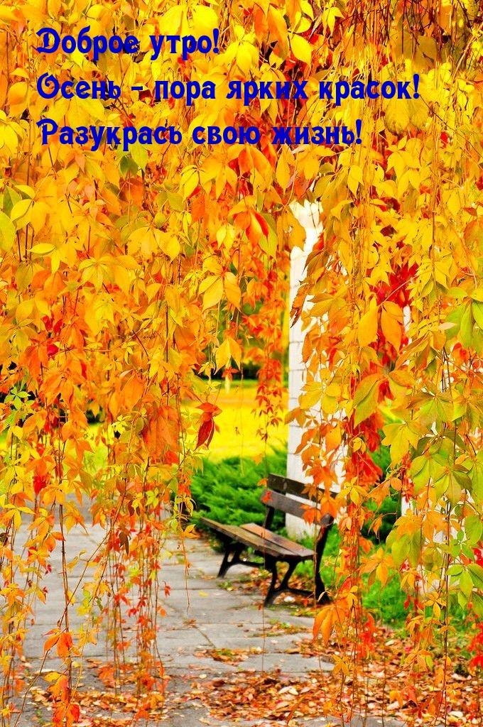 Доброе утро! Осень - пора ярких красок! Разукрась свою жизнь!