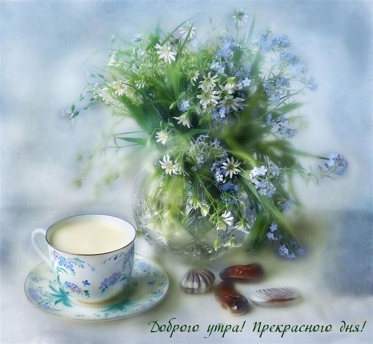 Доброго утра! Прекрасного дня!