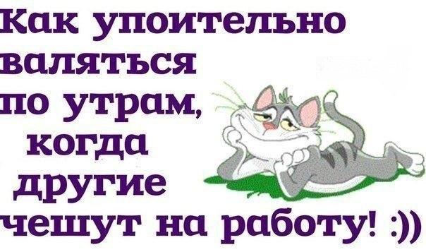 Как упоительно валяться по утрам, когда другие чешут на работу)