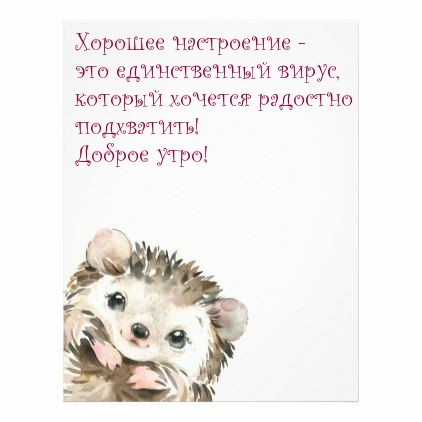 Желаю подхватить хорошее настроение, а не вирус