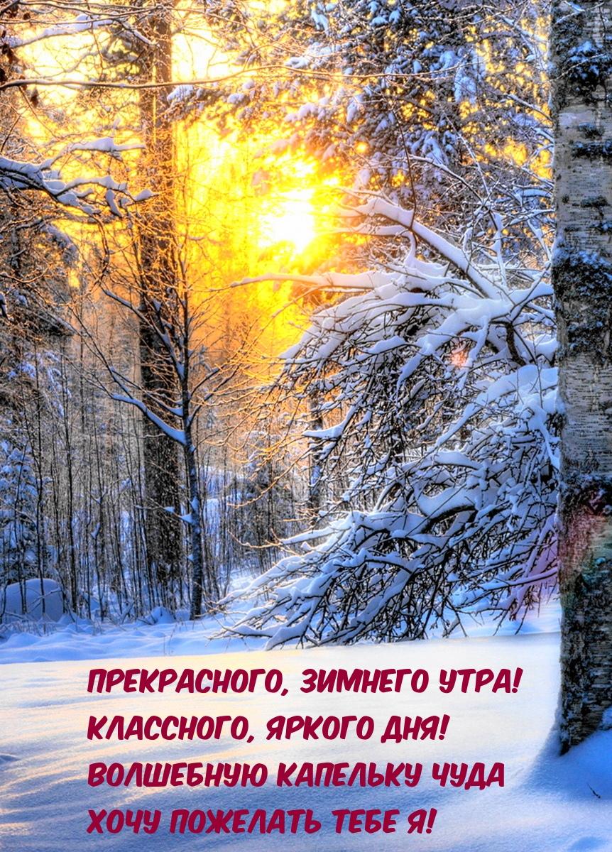 Прекрасного, зимнего утра!