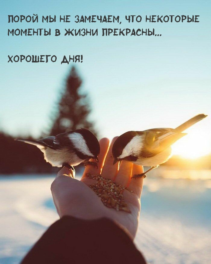 Порой мы не замечаем, что некоторые моменты - прекрасны