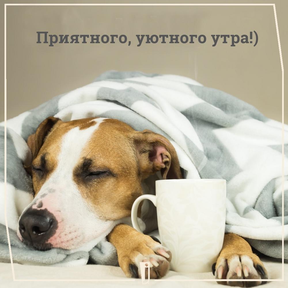 Приятного, уютного утра!)