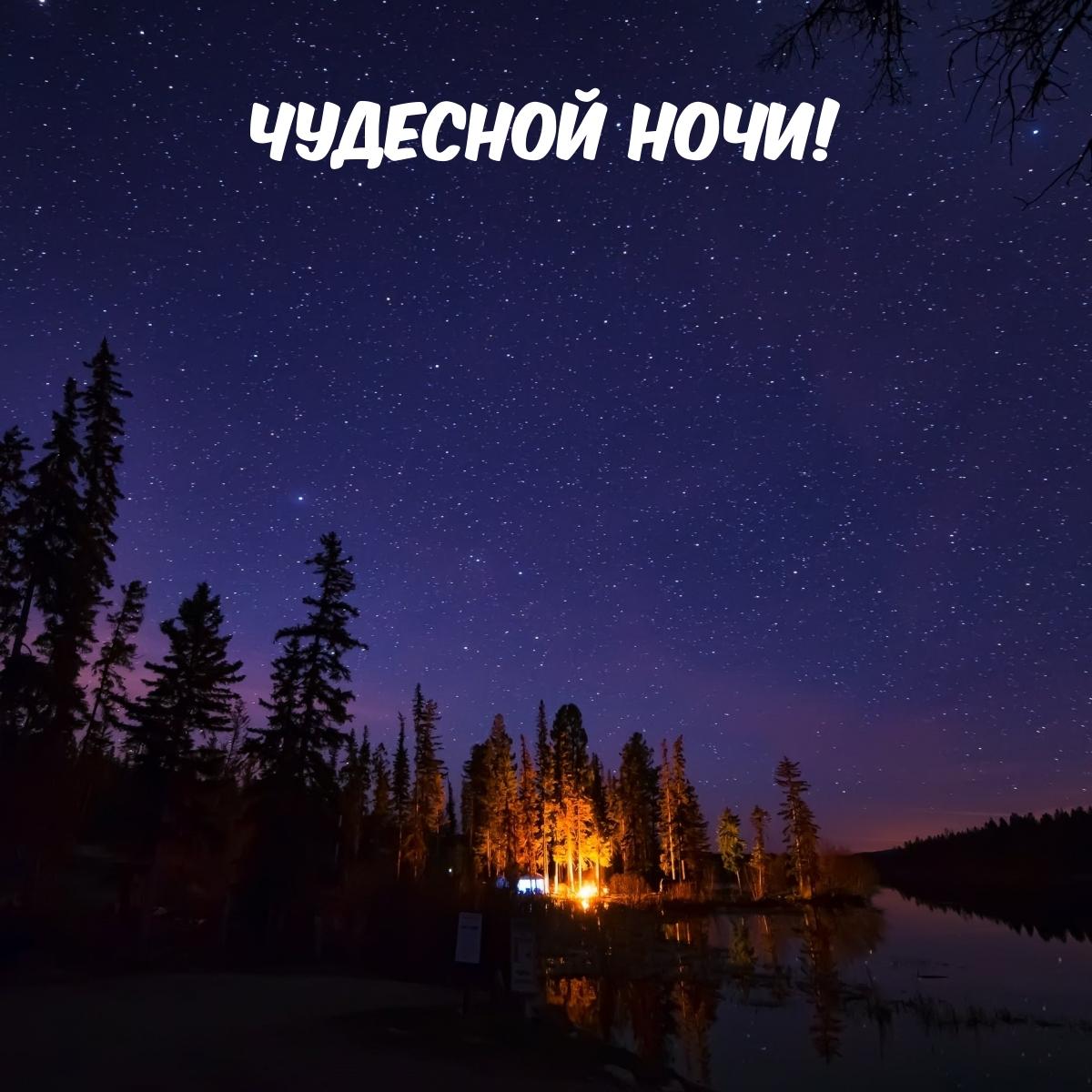 Чудесной Ночи!