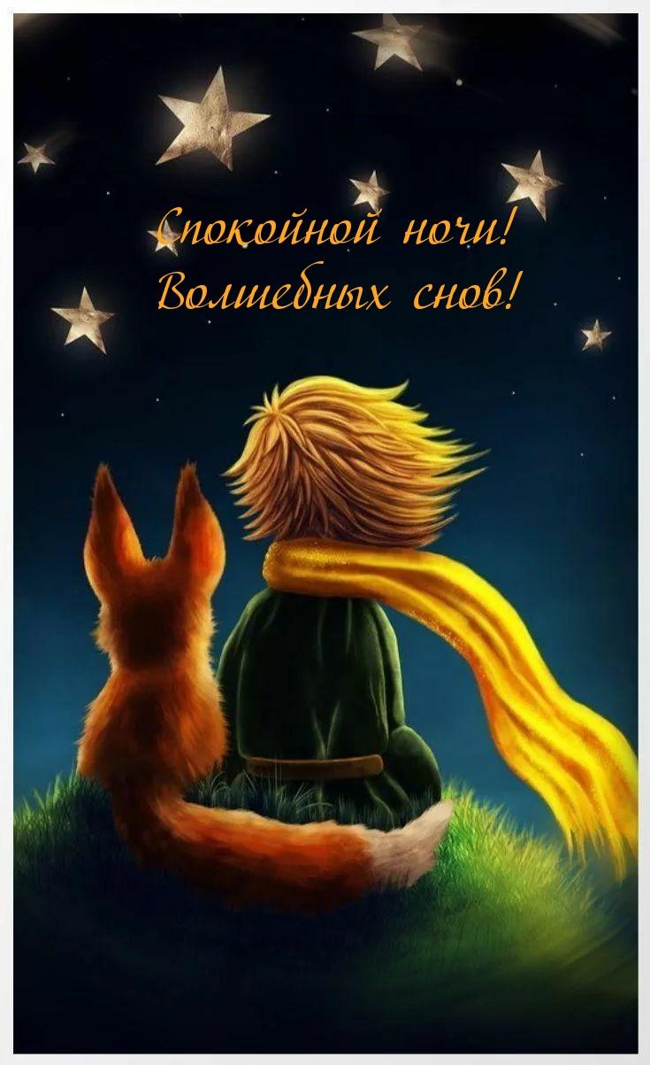 Спокойной ночи! Волшебных снов!