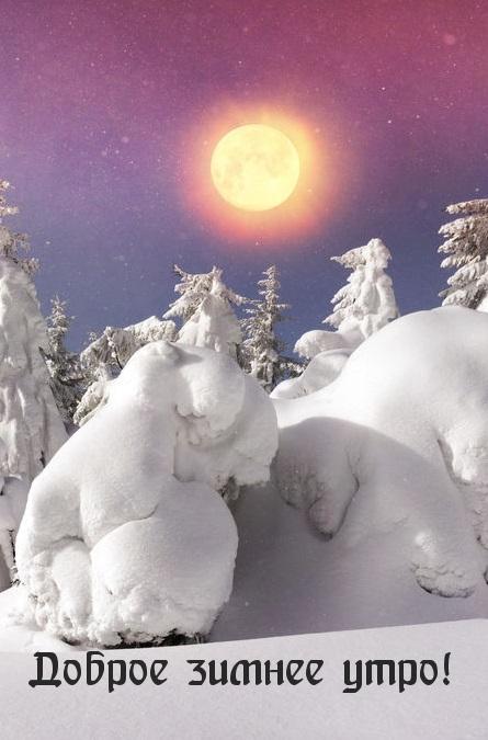 Доброе зимнее утро!