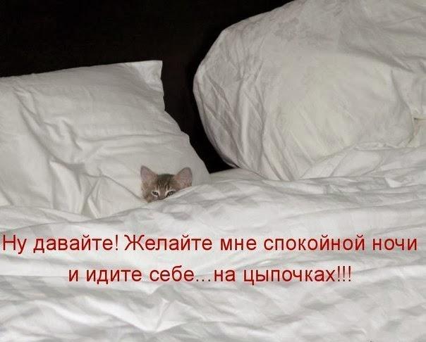 Желайте мне спокойной ночи и идите на цыпочках!