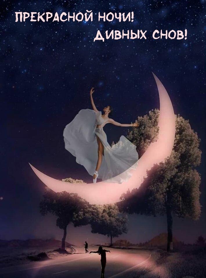 Прекрасной ночи! Дивных снов!