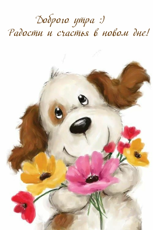 Доброго утра :) Радости и счастья в новом дне!